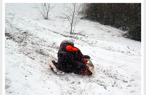 The HokieBird sledding