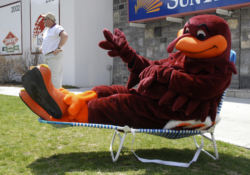 The HokieBird takes it easy.